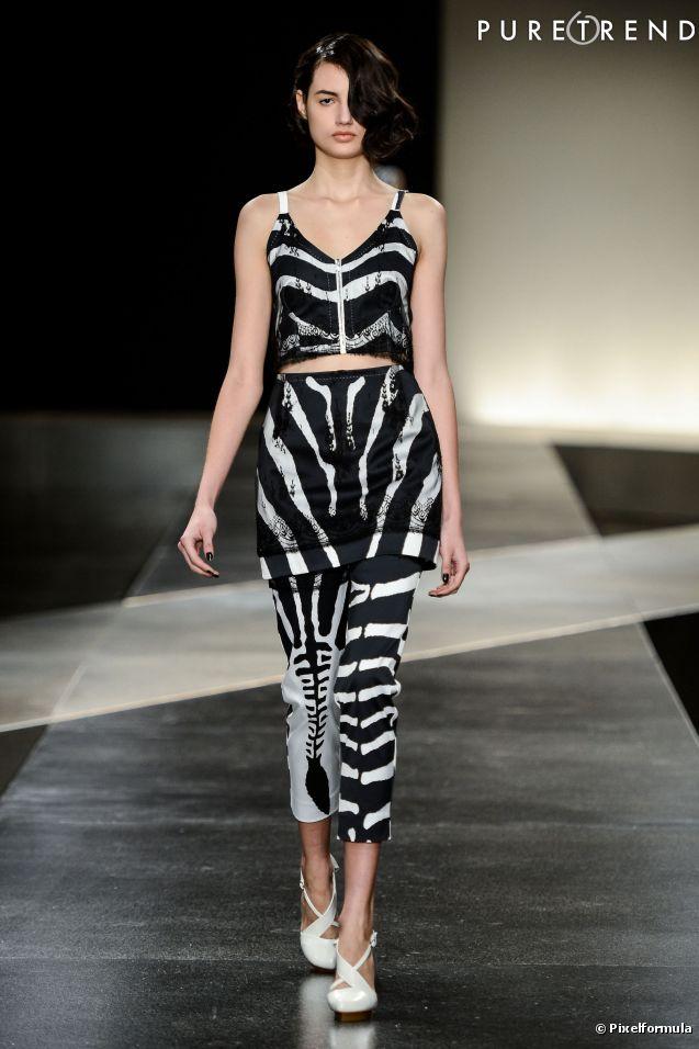 estampa zebra 5